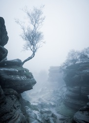 Mist at Brimham Rocks, Nidderdale, North Yorkshire