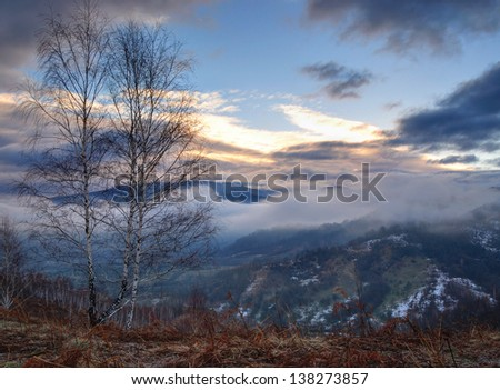 Mist covering trees of a mountain in sunrise