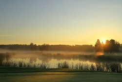 Mist in the air during the early morning. Great nature next to a pond or small lake outside. Golf course. Swedish nature. Nice climate and weather. Vallentuna, Stockholm, Sweden, Scandinavia, Europe.