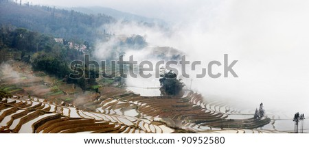 Mist in the Yuan Yang Rice terraces, Yunnan Province, China