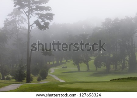 Mist over green San Francisco golf course