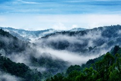 Mist rising from the Allegheny Mountains of  West Virginia along Interstate Seventy Nine North, USA