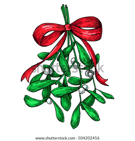 Mistletoe with red bow. Christmas decor plant. Hand drawn  illustration. Botanical xmas element. Holly with leaves and berry. Great for card, poster, holiday decoration.