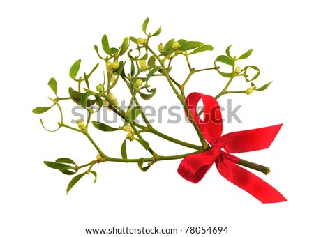 Mistletoe with red ribbon isolated over white background.