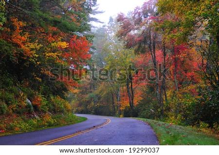 Misty Blue Ridge Parkway in Fall
