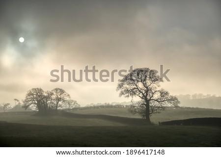 Misty countryside Landscape Cartmel English Lake District Stock photo ©
