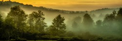 Misty dawn at Big Ditch Wildlife Management Area just outside Cowen in Webster County, West Virginia, USA