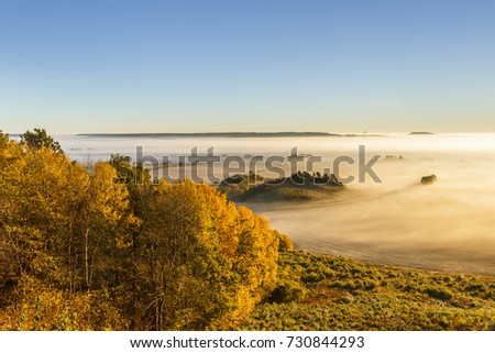 Misty dawn over a rolling countryside landscape in the the autumn #730844293