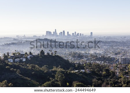 Misty early morning in downtown Los Angeles. #244494649