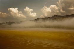 Misty Estuary