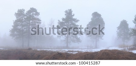 Misty evening. Landscape with the thick mist.