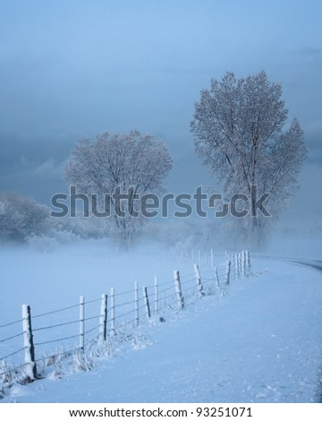Misty Field with Fence and Trees - stock photo