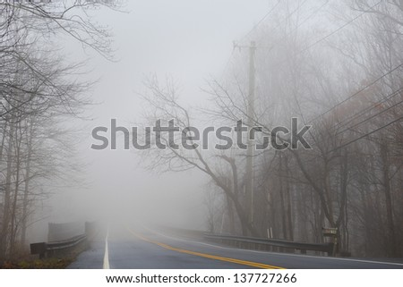Misty foggy dramatic forest road