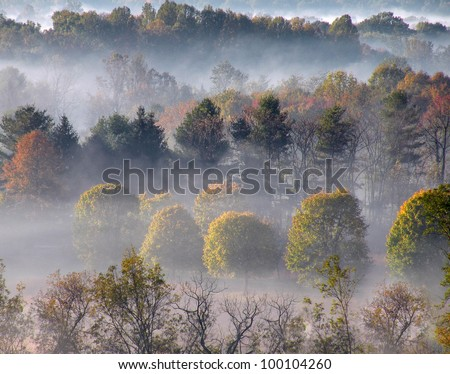 Misty hills in Warrenton, Virginia