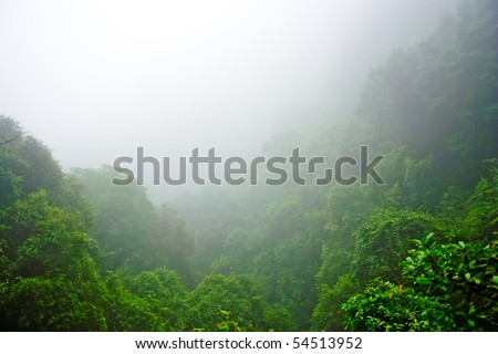 Misty hilly area with foggy