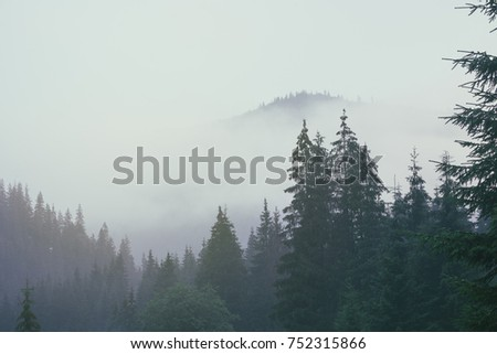 misty landscape with mountains...