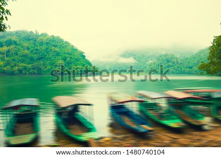 Misty morning at Ba Be Lake, Bac Kan Province, Vietnam. Beautiful serenity scenery in a tropical country. #1480740104
