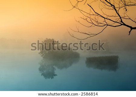 Misty morning by the lake