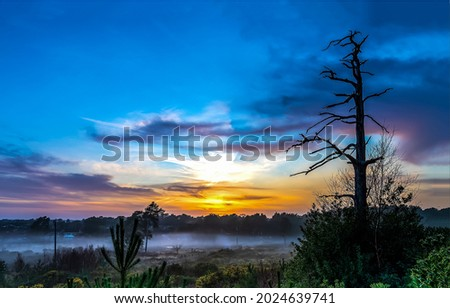 Misty morning dawn in nature. Mist at dawn. Early morning mist at dawn