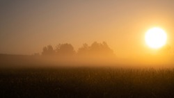 Misty morning in a cornfield. Quiet, autumn sunrise over the field. Beautiful landscape. First sunny rays.