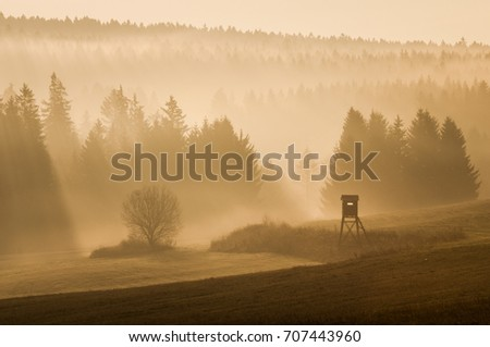 Misty morning in autumn landscape. Beautiful golden sunrise with fog and sun. Silhouettes of tree in the orange lighting. Peaceful autumn mood. Sunny mountain morning with wonderful colors. #707443960