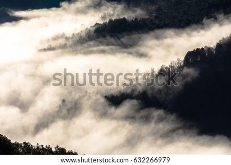 Misty morning in the Alta Garrotxa Mountains (Catalonia, Spain) #632266979