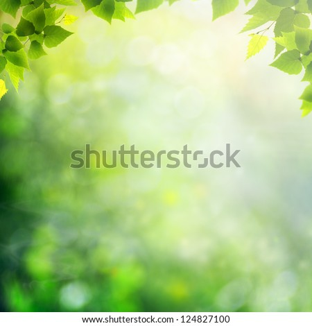 Misty morning in the forest, abstract natural backgrounds stock photo