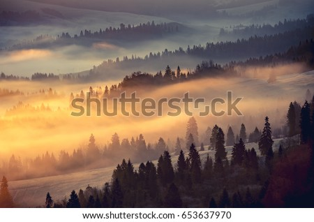 misty mountain forest landscape ...