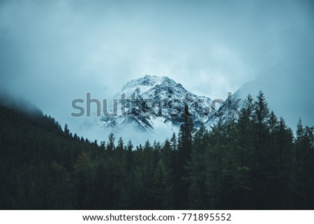 Misty mountains in Russia #771895552