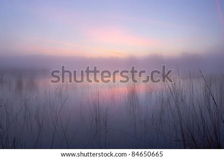 stock-photo-misty-sunrise-on-the-strabrechtse-heide-84650665.jpg