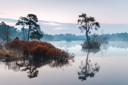 misty sunrise over a fen in the Oisterwijk forests and fens area in the Dutch province of North Brabant