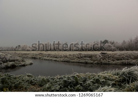 Misty wintry landscape  #1269065167