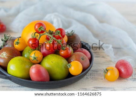 Mix of different varieties of tomato for cooking your favorite salads and snacks, your own garden and harvest, cherry red and yellow, a variety of kiwi #1164626875