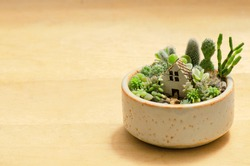 Mix of Succulent and cactus plants arrangement with miniature house ,open terrarium plant pot on wood table background