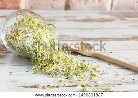 Mix of various sprouts on wooden background. Sprouted seeds. Healthy eating concept. Foto stock ©