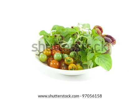 mix vegetable  salad