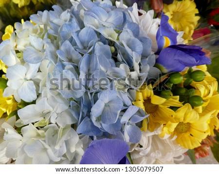 Mixed bouquet of hydrangea #1305079507