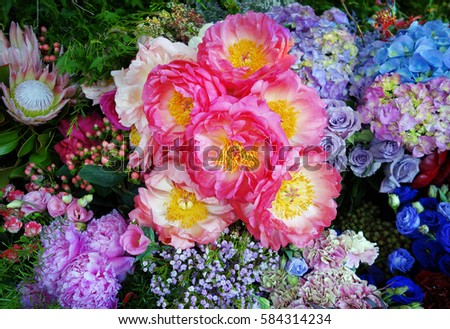 Mixed colorful flowers background
