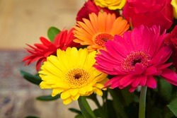Mixed Gerberas pink yellow orange and red