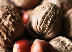 Mixed hazelnuts and walnuts in a close up view with a soft bokeh