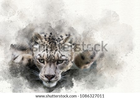 Mixed media digital painting of a snow leopard in motion