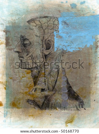 Mixed medium antique medical illustration. - stock photo