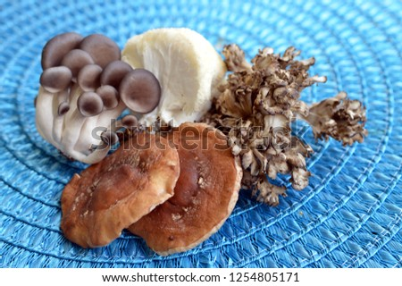 Mixed Mushooms: Shiitake, Lion's Mane, Oyster and Hen of the Woods