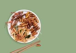 Mixed of crispy worm and insects in a ceramic plate with chopsticks on green background. The concept of protein food sources from insects. It is a good source of protein, vitamin, and fiber.