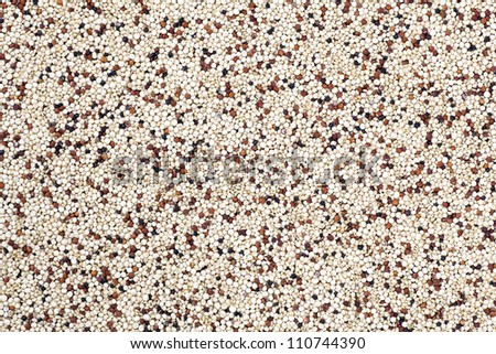 Mixed quinoa seeds filling frame for food texture or background