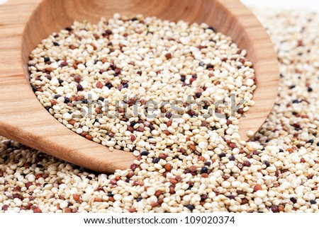 Mixed Quinoa seeds spilling from a wooden spoon.