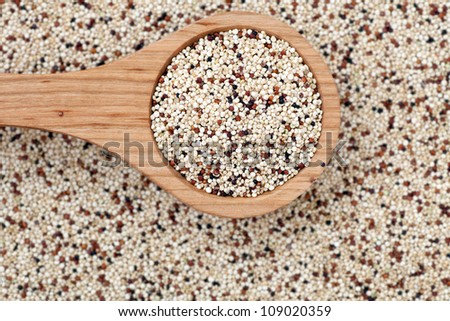 Mixed quinoa seeds with  a wooden spoon.