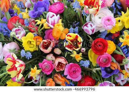 Mixed spring flowers in an arrangement, bright colors