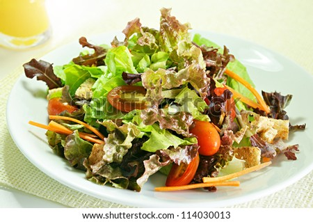 Mixed vegetable healthy salad in white dish