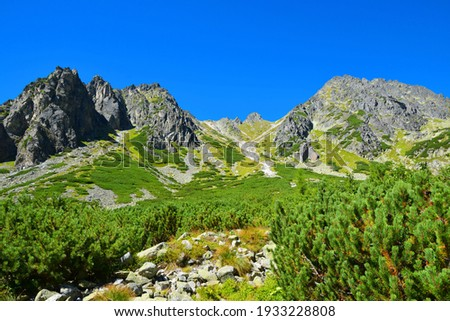 Mlynicka Valley in Vysoke Tatry (High Tatras), Slovakia. Mountain lanscape. Stockfoto ©